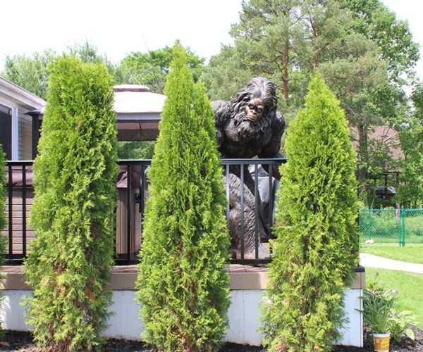 railing-bigfoot